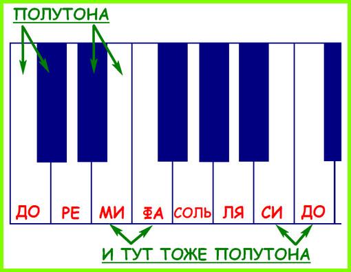 полутона на клавишах фортепиано