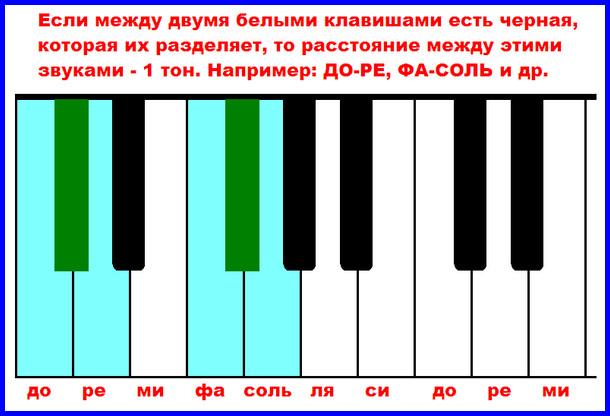 целые тона между двумя белыми клавишами