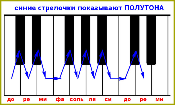 полутона на клавиатуре пианино