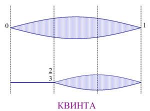 квинта получится, если струну разделить на три части и умножить это расстояние на два