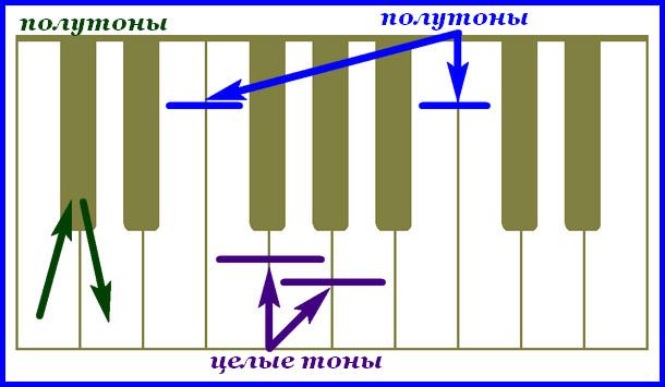 тоны и полутоны на фортепианной клавиатуре