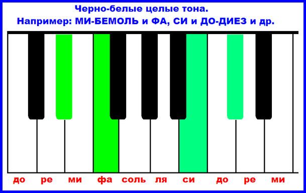 черно-белые целые тона на клавиатуре фортепиано