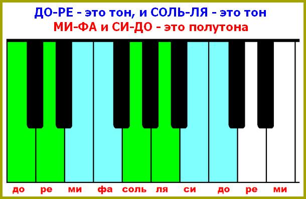 тона и полутона на белых клавишах